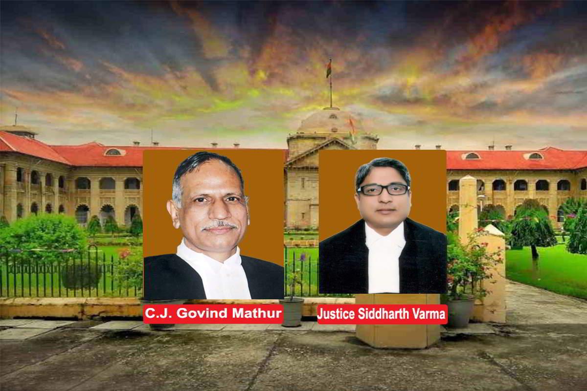 cj and siddharth verma j
