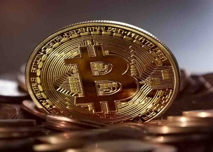 bitcoin law trend
