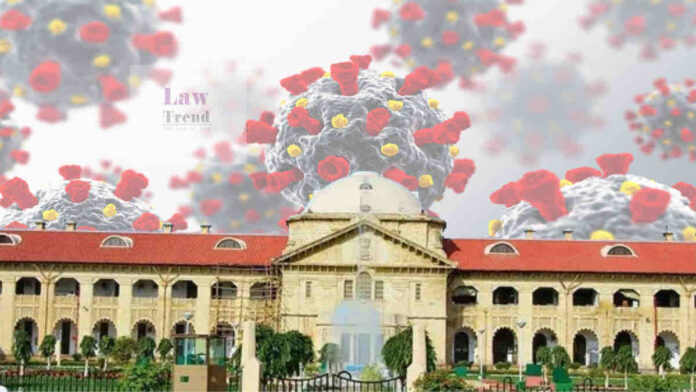 Allahabad High Court COVID Law Trend